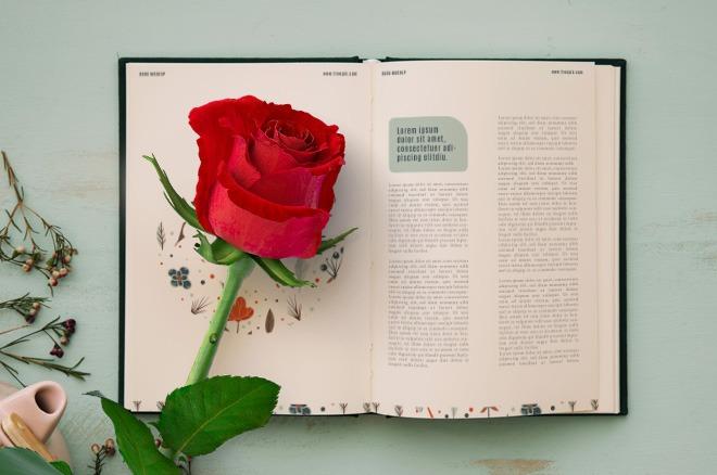 Un libro y una rosa para alcanzar tus metas