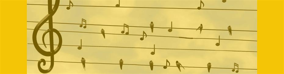 Los mejores sonidos binaurales para estudiar